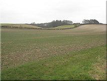 SE9346 : View towards Holmedale Farm by Jonathan Thacker