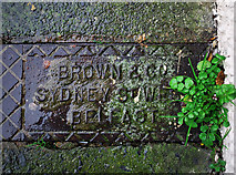 J5081 : Drain cover, Bangor by Rossographer