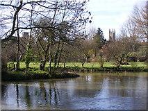 TM3389 : The River Waveney and Bungay by Glen Denny