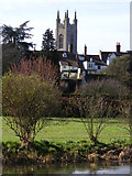 TM3389 : The tower of St Mary's Church, Bungay by Glen Denny