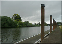 SO8453 : New River Severn  moorings north of Diglis Lock, Worcester by Roger  Kidd