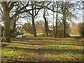 TQ2552 : On Reigate Hill by Derek Harper