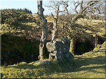 NS4660 : Remains of a dry-stone wall by Lairich Rig