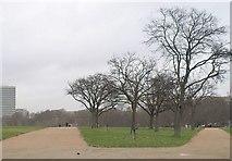 TQ2780 : Hyde Park by Derek Harper