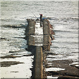 NZ3672 : Surface water outfall, Whitley Bay by mo claydon