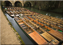 SP5206 : Punts on the Cherwell, Oxford by Paul Harrop