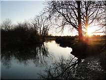 TG2105 : The River Yare at Harford, looking into the sunset by Adrian S Pye