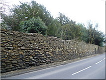 NT3366 : Monkland Wall, Newbattle Road by kim traynor