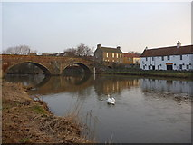 NT5173 : East Lothian Rivers : The Tyne Above Nungate Bridge, Haddington by Richard West