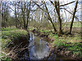 SJ7500 : River Worfe south-west of Beckbury, Shropshire by Roger  Kidd