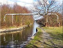 SJ6999 : Bridgewater Canal by David Dixon