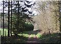 SO7599 : Track near Badger, Shropshire by Roger  Kidd