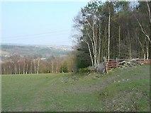 SE1839 : Footpath past the corner of Dawson Wood, Idle by Humphrey Bolton