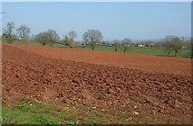ST0204 : Ploughed field near Bolealler House by Derek Harper