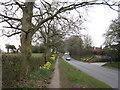 SJ8975 : Macclesfield Road, Prestbury by Peter Turner