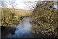 SO4372 : River Teme from Burrington Bridge by N Chadwick