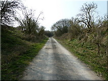 TQ1913 : Downs Link path south to Steyning and Bramber by Dave Spicer