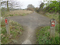 TG2133 : Once a road, now a cycleway and footpath by Adrian S Pye