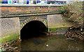 J3674 : The Connswater, Belfast (11) by Albert Bridge