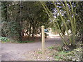 TM3760 : Footpath & entrance to Monks Valley House by Adrian Cable