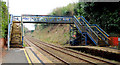 J4180 : Footbridge, Cultra station by Albert Bridge