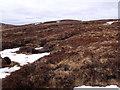 NN6570 : Rough ground on the summit area of Sron na h-Eiteich near Dalnaspidal by ian shiell