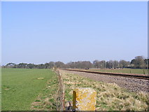 TM3760 : Looking along the railway to Saxmundham by Adrian Cable