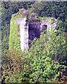 R2688 : Tirmicbran Tower House by Roger Diel