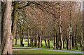 J3581 : Hazelbank Park, Newtownabbey (1) by Albert Bridge