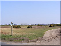 TM3959 : Footpaths to the A1094 Farnham Road & Priory Road by Geographer