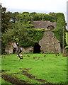 R5080 : Garruragh Tower House, Ruins of by Roger Diel