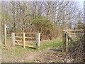 TM3761 : Bridleway to Kiln Lane (U2203) by Adrian Cable