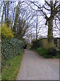TM3863 : Footpath to the B1121 North Entrance by Geographer