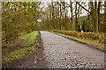 SD6220 : A cobbled lane near Brinscall by Ian Greig