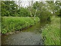 SP0682 : River Rea, Selly Park by Rob Newman