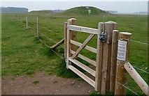 SU1142 : The Stonehenge tumuli by Graham Horn