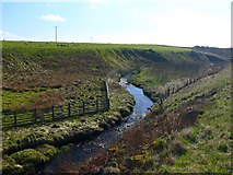 NS4947 : Kingswell Burn by Andy Farrington