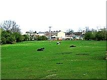 SO8480 : Footpath across a field, near Cookley by P L Chadwick
