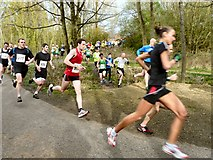 SJ9594 : Five Mile April Run by Gerald England