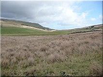 SD7992 : Upper Wensleydale by Christine Johnstone