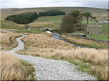 SD7992 : The Pennine Bridleway near Ure Force by Christine Johnstone