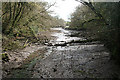 SX3957 : Saltash: creek below railway by Martin Bodman