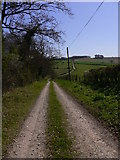 SU8413 : Monarch's Way east of Hylter's Lane by Shazz