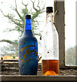 TG2704 : Bottles on a windowsill by Evelyn Simak