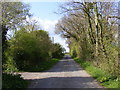 TM3268 : Pound Green Road, Badingham by Adrian Cable