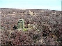 SD9620 : Boundary Stone #4 by Humphrey Bolton