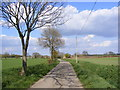 TM3169 : New Road, Badingham by Adrian Cable