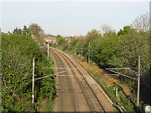 TQ2383 : North London Line from College Road by Peter Whatley