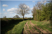 SK7474 : Old Moorgate by Richard Croft