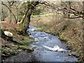 SX1391 : The River Valency Below the Ford by Tony Atkin